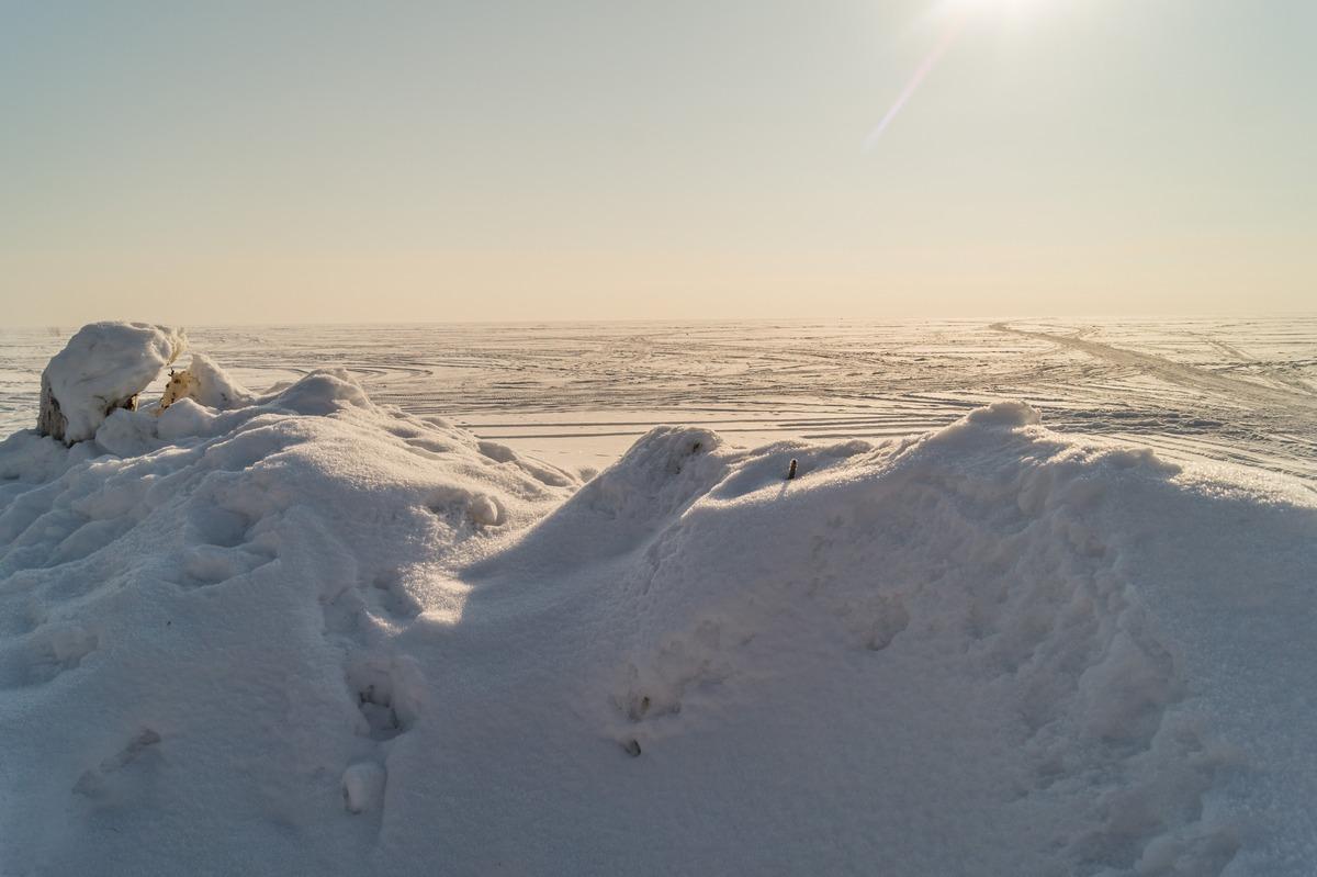 Эстония. На Чудском озере. Во льдах.