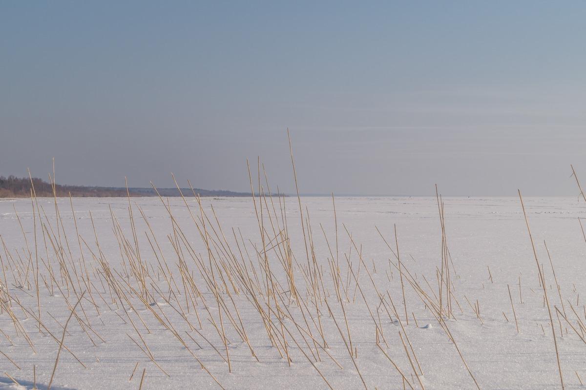 Эстония. На Чудском озере.
