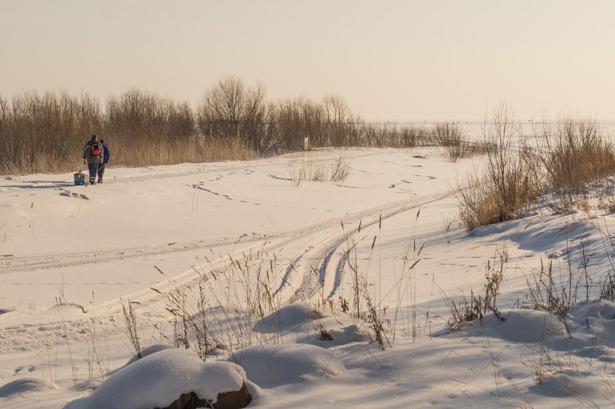 Эстония. На Чудском озере. Рыбаки или дорога к хорошему улову.