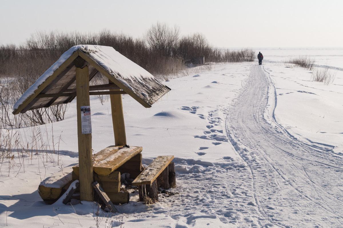Эстония. На Чудском озере. Рыбацкий путь к озеру.