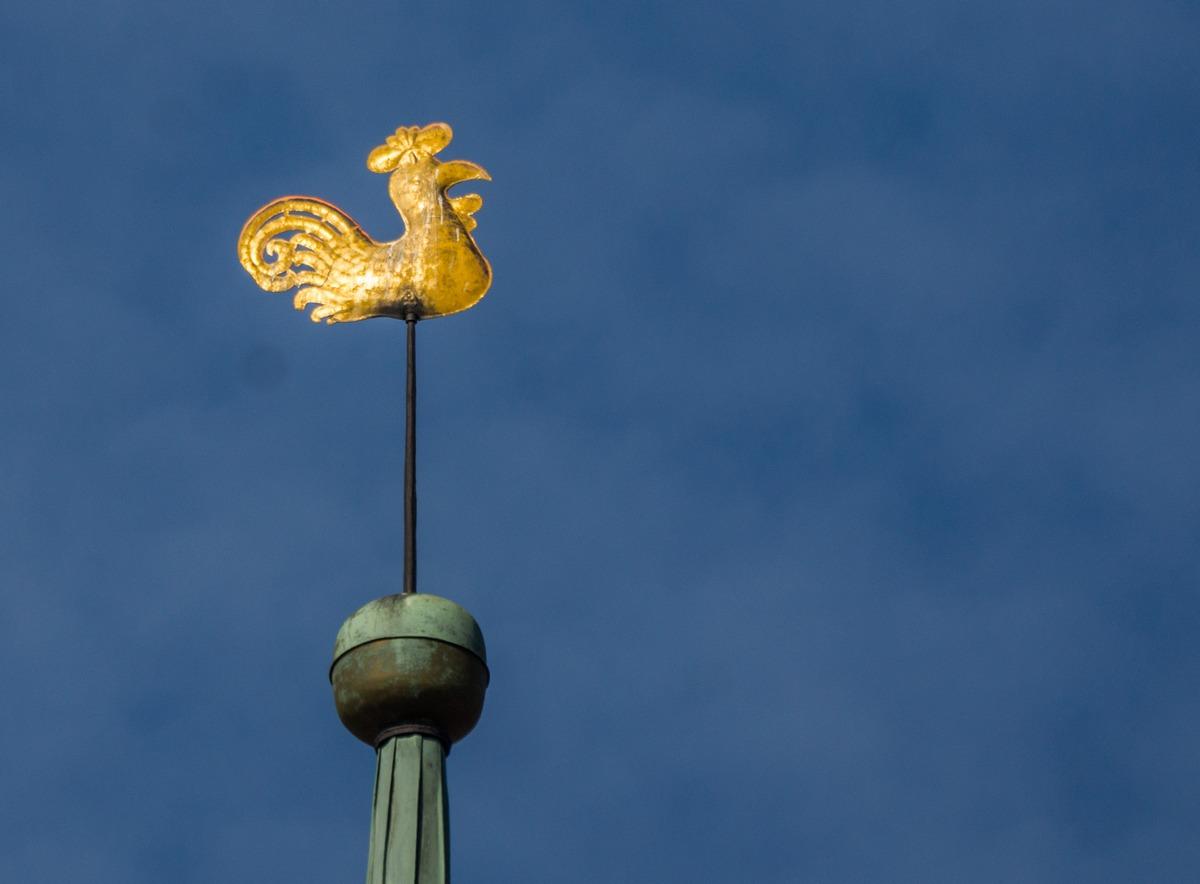 Рига. Петушок на шпиле собора Святого Иакова.